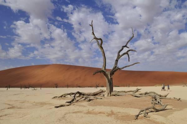 namibija-predavanje_1_resize